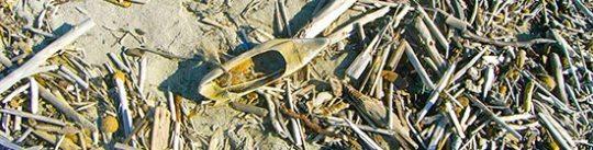 Schuh gelb im Sand